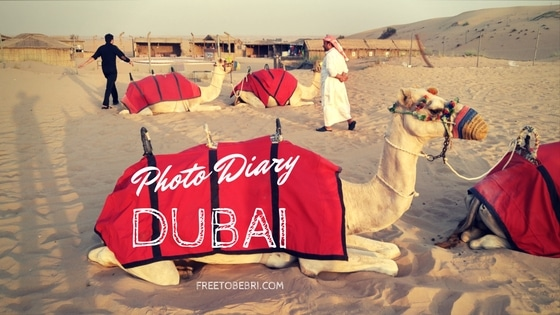 Photo Diary : Dubai