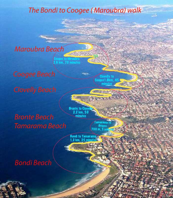 Map of the Bondi to Coogee walk , Sydney Australia - FREETOBEBRI.COM